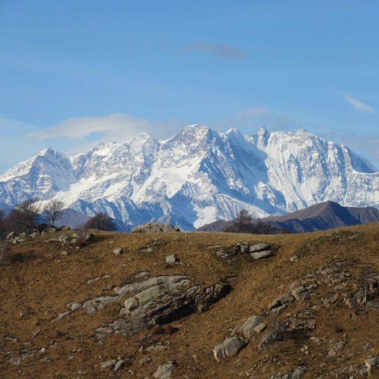 Il Monte Rosa dall'Alpe Nuovo
