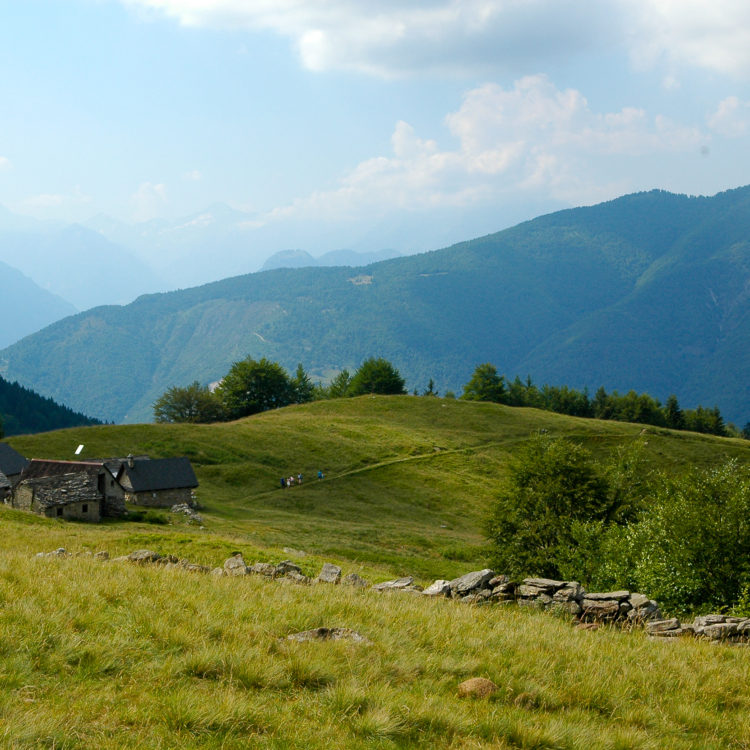 Alpe Campra - Valle Vigezzo - ph. Cristiano Mazzi