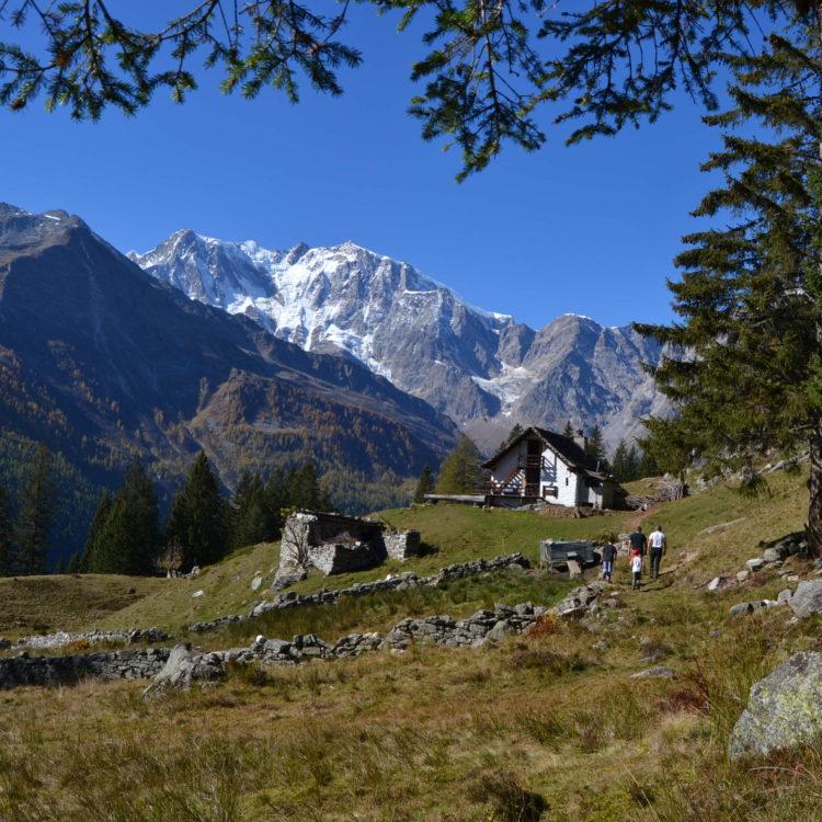 Alpe Cicerwald - ph. la valle del Rosa forum free