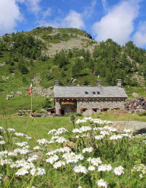 Alpe Monscera (Val Bognanco) - Rifugio Gattascosa