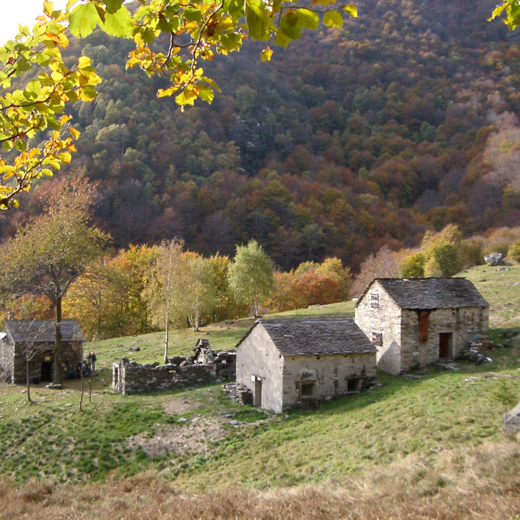 Alpe Pian di Boit - ph. Archivio Parco Nazionale della Val Grande